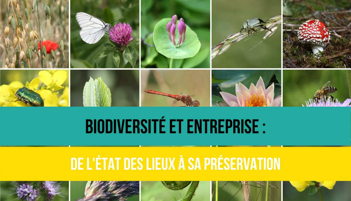 Biodiversité - Positive Workplace le label RSE made in France